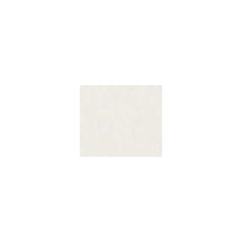 PEINT PORCELAINE BLANC PASTEL - 25g - PEINTURES CERADEL - Cigale et Fourmi