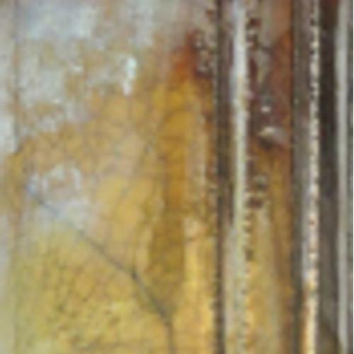 Photo NITRATE D'ARGENT - FLACON DE 10g - achat oxydes-metalliques en ligne avec Cigale et Fourmi