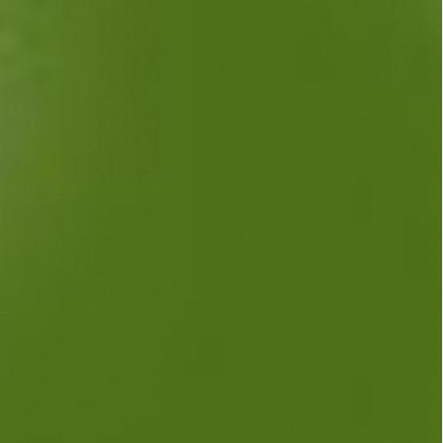 Photo EMAIL VERT GAZON SANS PLOMB 500G - achat emaux-en-poudre-940c-1020c en ligne avec Cigale et Fourmi