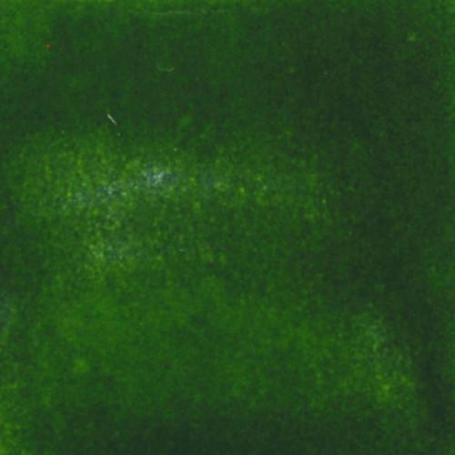 Photo EMAIL VERT FONCE CADMIUM PLOMBEUX- 500 G - achat email-ceramique-plombeux en ligne avec Cigale et Fourmi