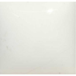 COLORANT BLANC EMAUX & BARBOTINE - 100g