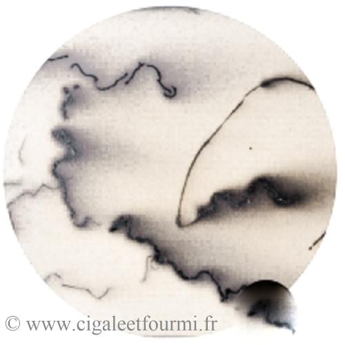 Sigillée, terre sigillée - Terre Sigillée liquide - Cigale et Fourmi