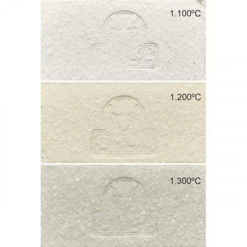 PRAF - GRES BLANC CHAMOTTE 0-0.5  SAC12.5 KG - Terres à Grès - Cigale et Fourmi